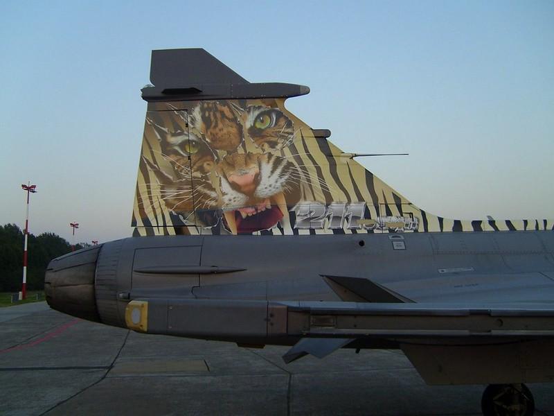 Saab JAS-39C flus 6