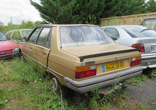 Renault 9 Automatic   by Spottedlaurel