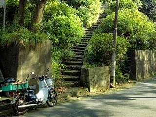 Stepway | by Shinji Abe