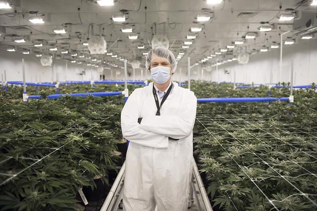Recreational Marijuana in Las Vegas
