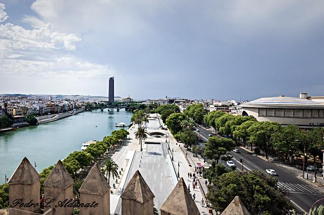 Guadalquivir-desde-Torre