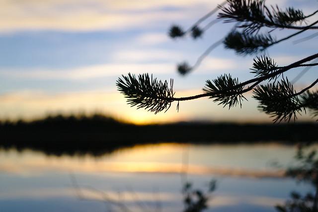 Lake silhouettes