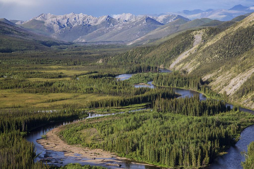 Beaver Creek Wild and Scenic River, Alaska | Beaver Creek