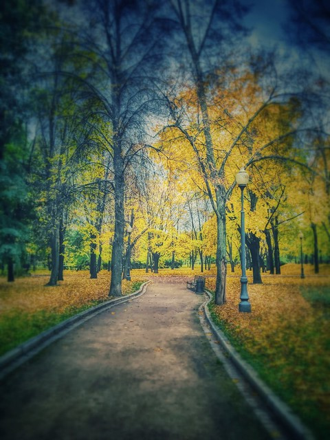 #Autumn in #Moscow #Park