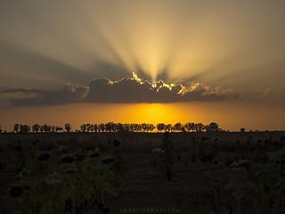 Sunset of Salento
