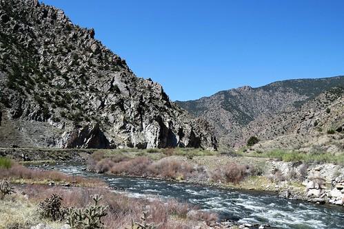 parkswildlife parks park recreation site colorado canoncity arkansasriver arkansasheadwatersrecreationarea usroute50 bighornsheepcanyon canyon