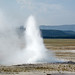 Morning's Thief Geyser (Fountain Group, Lower Geyser Basin, Yellowstone Hotspot Volcano, nw Wyoming, USA)