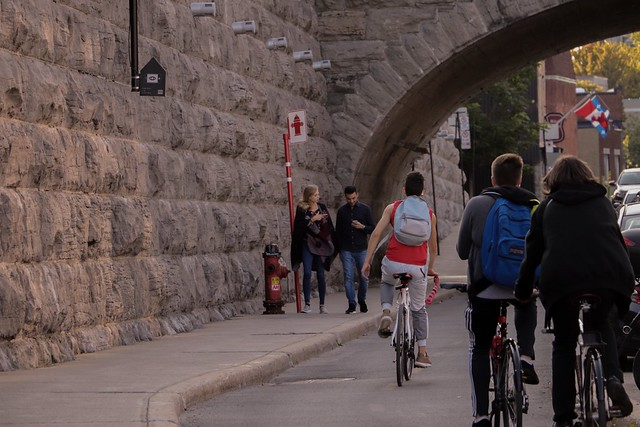 Montreal's cyclists