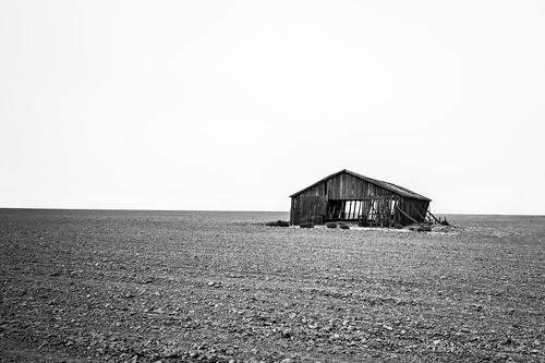 wreck landscape dirtroad blackwhite quiet structure summer forgotten oregon monochrome architecture farm barn sky scary solemn abandoned creepy field arlington unitedstates us