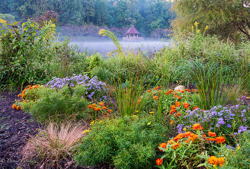 meadowlark virginia fall flowers gazebo lasdscape water