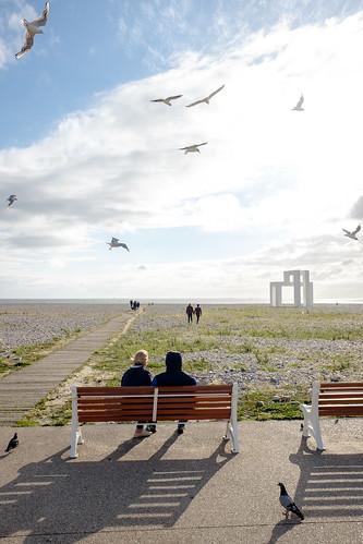 Le Havre 500 ans