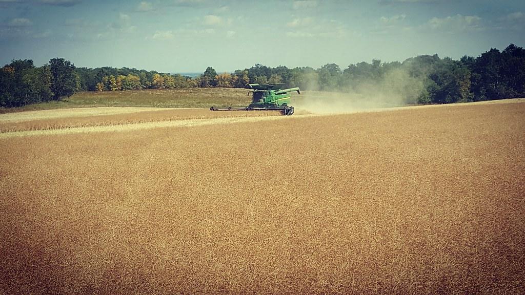 Schemper 2017 - North Dakota Harvest