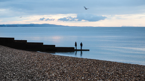 charmouth dorset lyme blue pebbles sunset lonely gull shore shingle evening