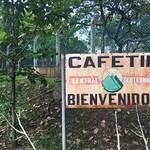 Ahuachapán Geothermal Plant