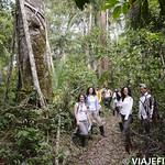 Viajefilos en la Amazonia, Peru 050