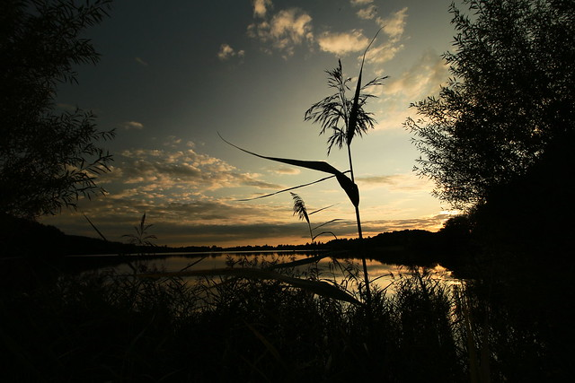 silent moment - summer ´s gone