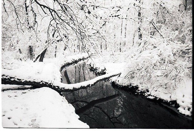 de kempen in winter