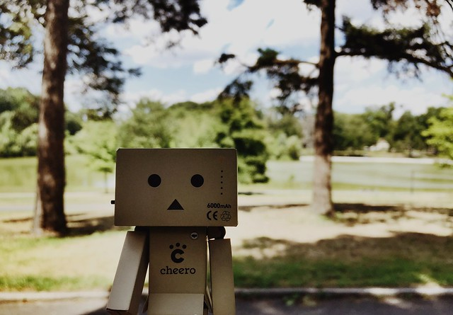 Danbo adventurers