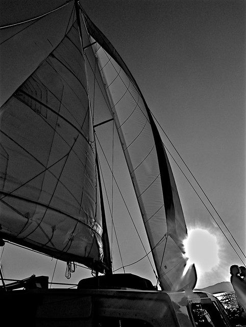 Summer Evening Sail On Lake Tahoe