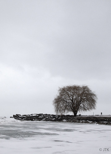 Frozen Lake Erie | by jip_and_elsewhere