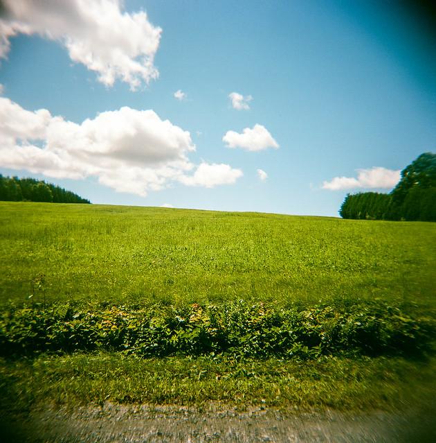 Holga et le vert