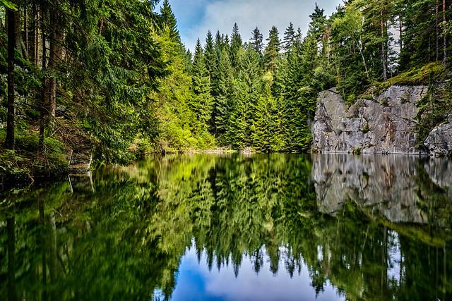Forstwiesenbruch No. 4 - Upper Franconia, Germany