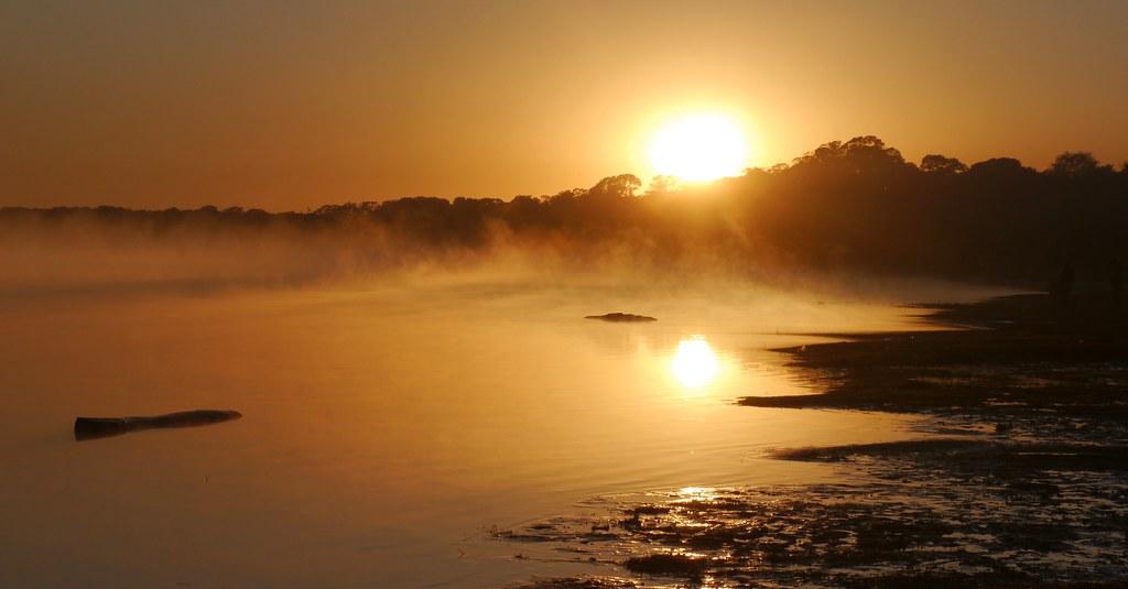 Back to the Xingu . . .