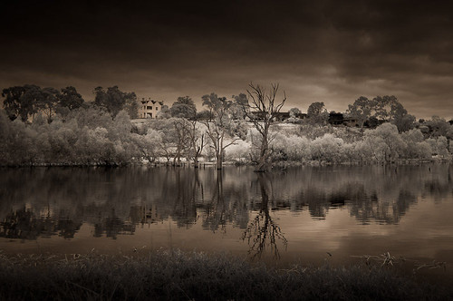 banyuleflats infrared infraredphotography banyule photography nikonaustralia nikon landscape melbourne victoria australia