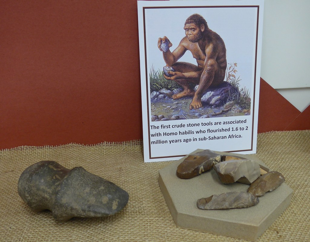 Early stone tools, Museum of Anthropology, Wayne State College