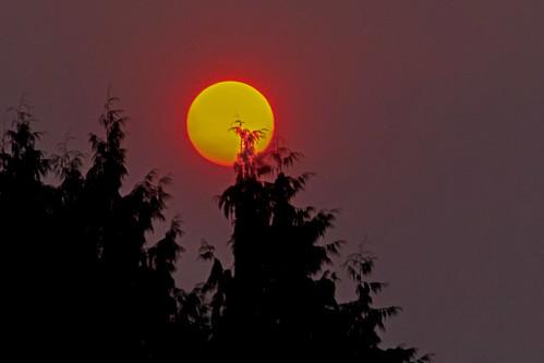 smoke smokeysunrise sun sunshine red rainieroregon