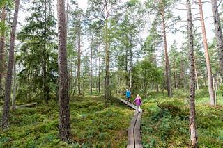 Store Mosse Nationalpark | by rainerSpunkt