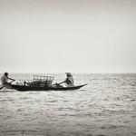 Life in Tanguar Haor - VII