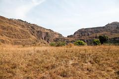 Monte Nimba