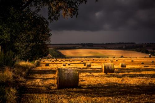 sunshine countryside summer perthshire landscape sunset scotland fields bales leefilters canon strawbales harvest clouds dunning unitedkingdom gb