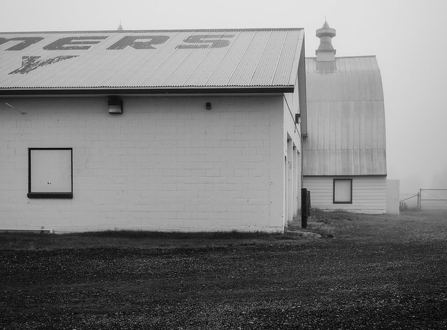 Foggy Day at Creamers Field Shared BW-1