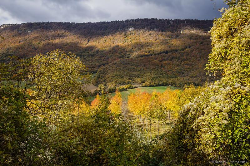 Colores de otoño en Urbasa