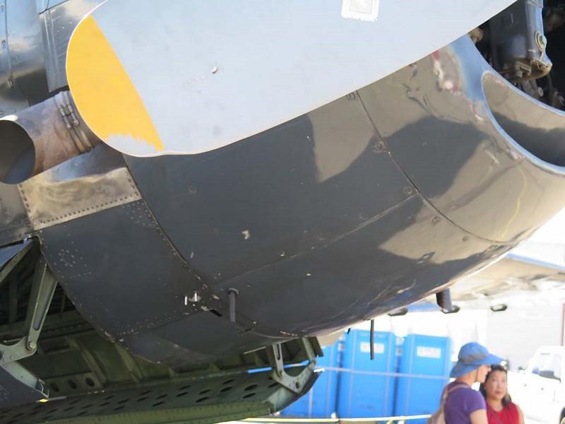 Grumman TBM-3E Avenger 6