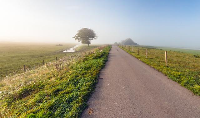Morning mist - Ochtendnevel