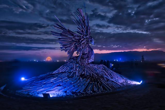 A Phoenix Rises
