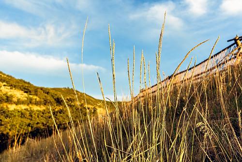 landscape outdoor grass blue sky summer utah mountains nikon d750