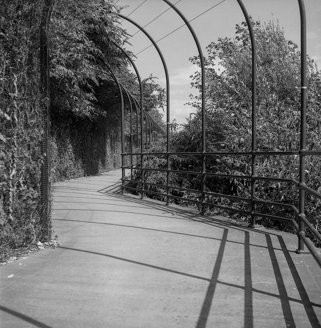 FILM - Zig-zag shadow path