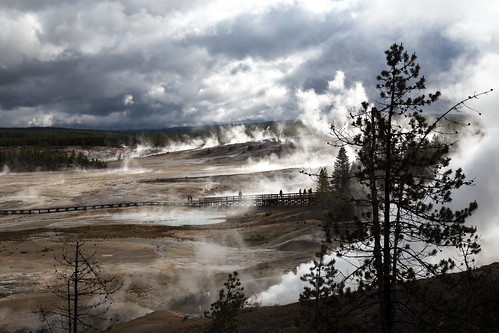 yellowstonenationalpark wyoming usa norrisgeyserbasin geyser steam silhouette canon canon6d canon24105l landscape geothermal