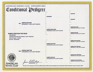 AKC Conditional pedigree | by RBElwell