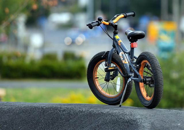 The small fat-bike