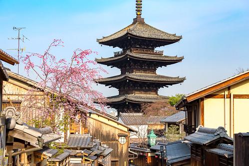 八坂の塔 / Yasaka-Tower