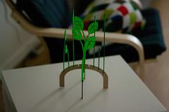 Laser-cut plant