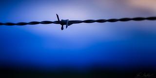 The Iron Knot (O34) | by Darblanc ( http://darblanc.com )