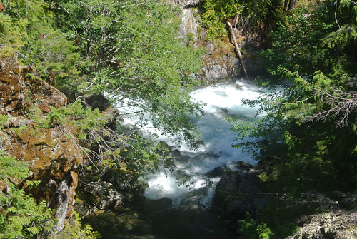 Olympic Mountain Dreams day  3 - North and West Forks of the Dosewallips River | by Spiral Cage