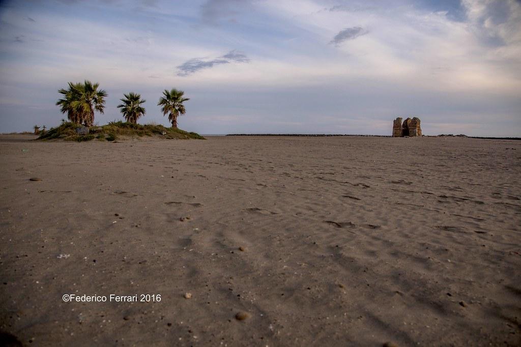 35 torre flavia spiaggia 24-105 - 24mm rudere e palme