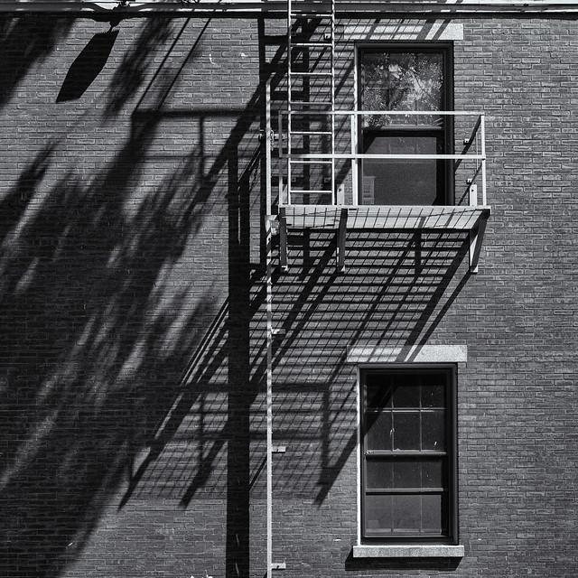 Shadows on a wall.